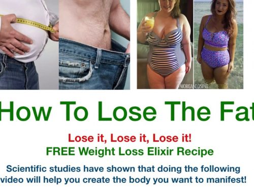 How To Lose Your Fat